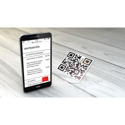 Su Carta QR estándar